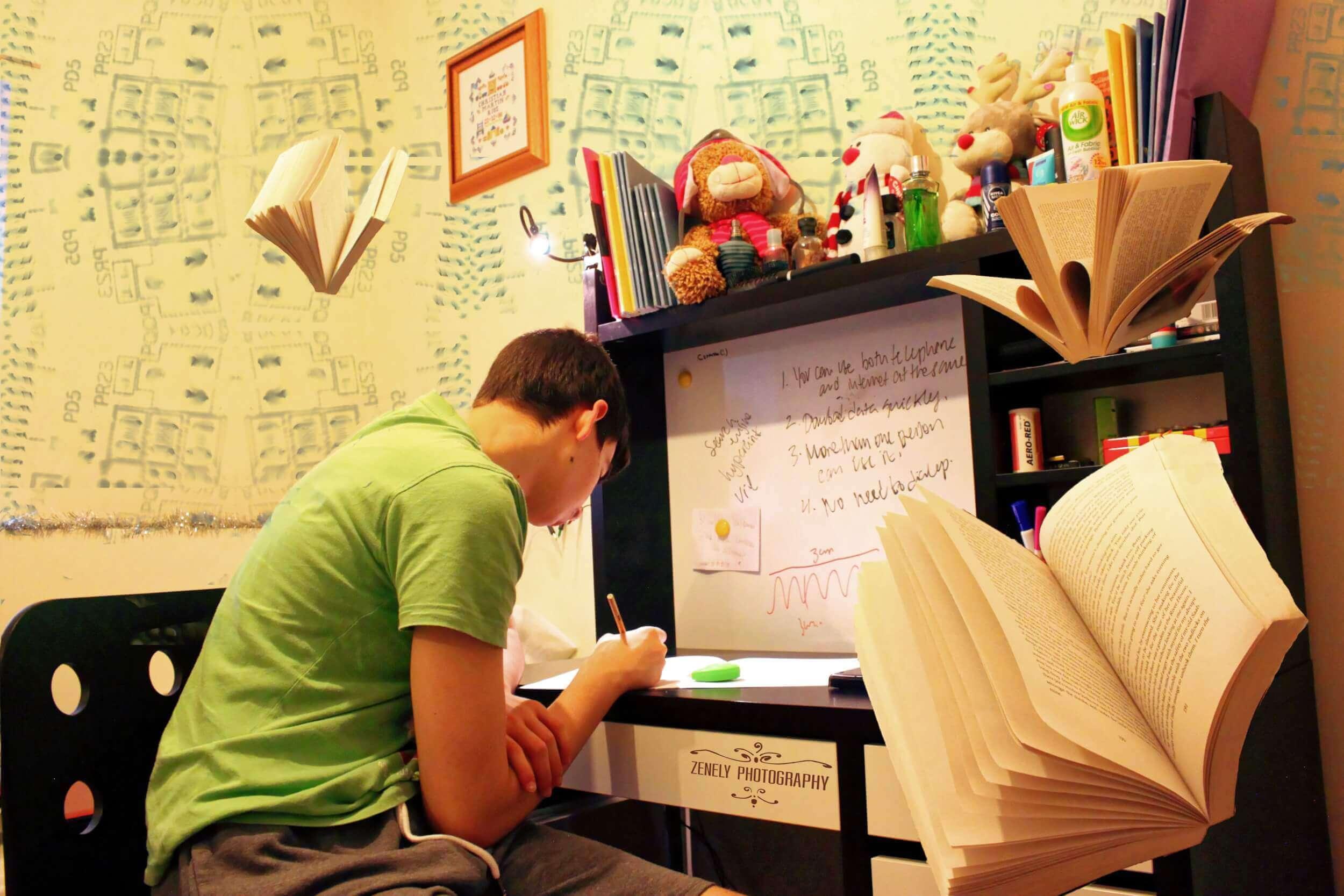 Studenten lernen eigenständig im Selbststudium (c) 27707 / pixabay.de