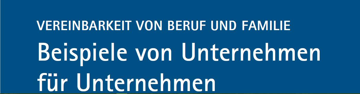 Vereinbarkeit von Beruf und Familie | Beispiele von Unternehmen | Demografienetzwerk FrankfurtRheinMain 2012 (c) demografienetzwerk-frm.de