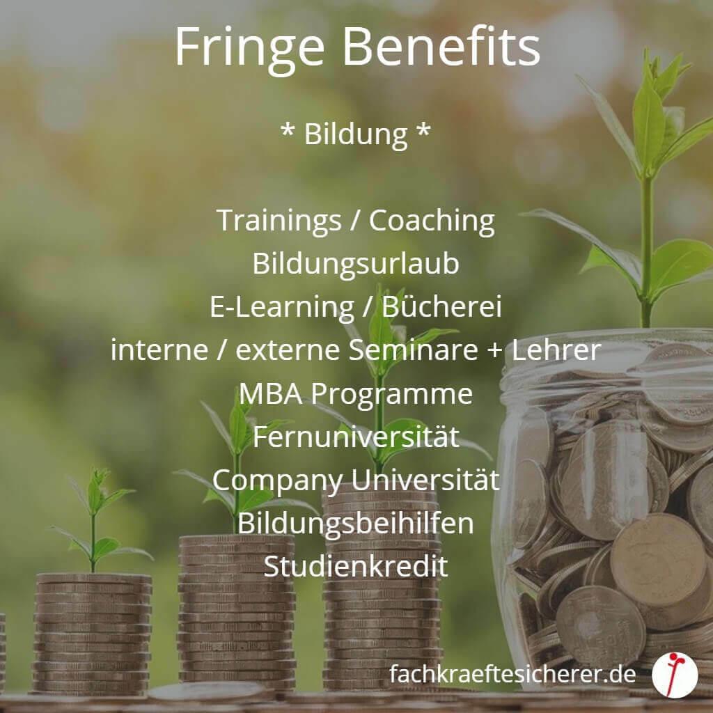 Beispiele Fringe Benefits Bildung
